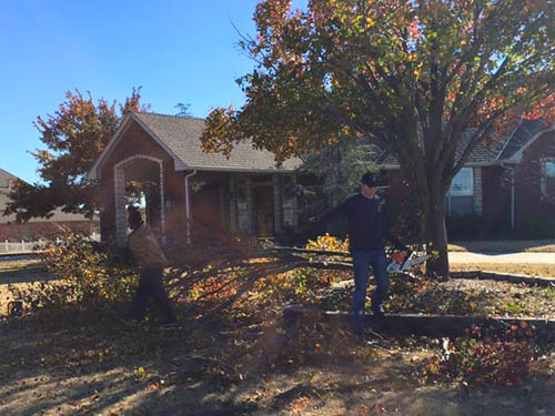 Leaf Removal and Fall Clean Up